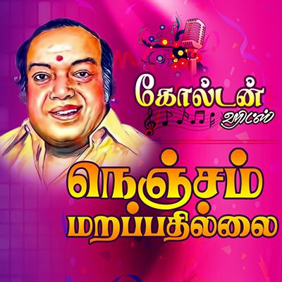 Sridhar Navrax LIGHT MUSIC  Golden Hits